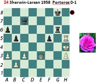 Puzzle 24  Sherwin-Larsen