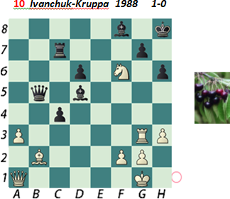 Puzzle 10  Ivanchuk-Kruppa