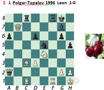 J.Polgar-Topalov