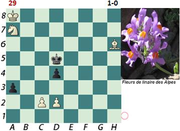 puzzle 29         1-0
