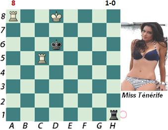 puzzle 8          1-0
