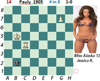 puzzle 14  Pauly  1905   # in 3