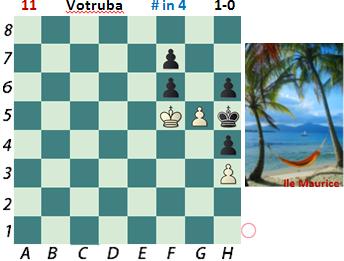 puzzle 11 Votruba  (study)    # in 4