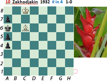 puzzle 10  Zakhodjakin (study) 1932  # in 4