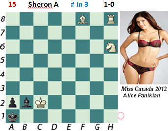 puzzle 15  Sheron (study)     # in 3
