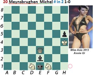 puzzle 20  Meynsbrughen (study)  # in 2