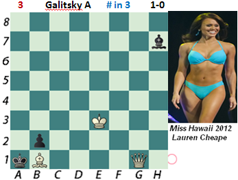 puzzle 3  Galitsky A  (study)  # in 3
