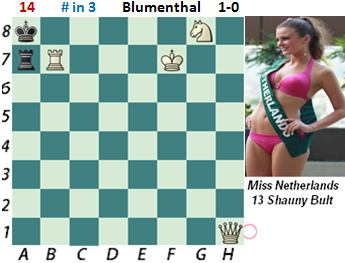 puzzle 14    Blumenthal (study)    # in 3