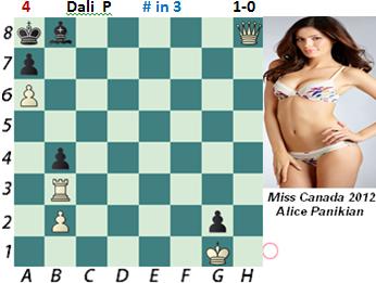 puzzle 4    Dali P  (study)    # in 3