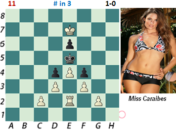 Chess Beauty Puzzles Nice 2