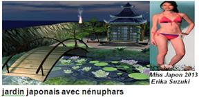 jardin japonais avec nénuphars